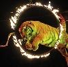 Цирки в Жигулевске